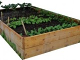 Grow Your Own (with help from Whole EarthCenter)