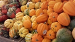 Squash at Whole Foods Market