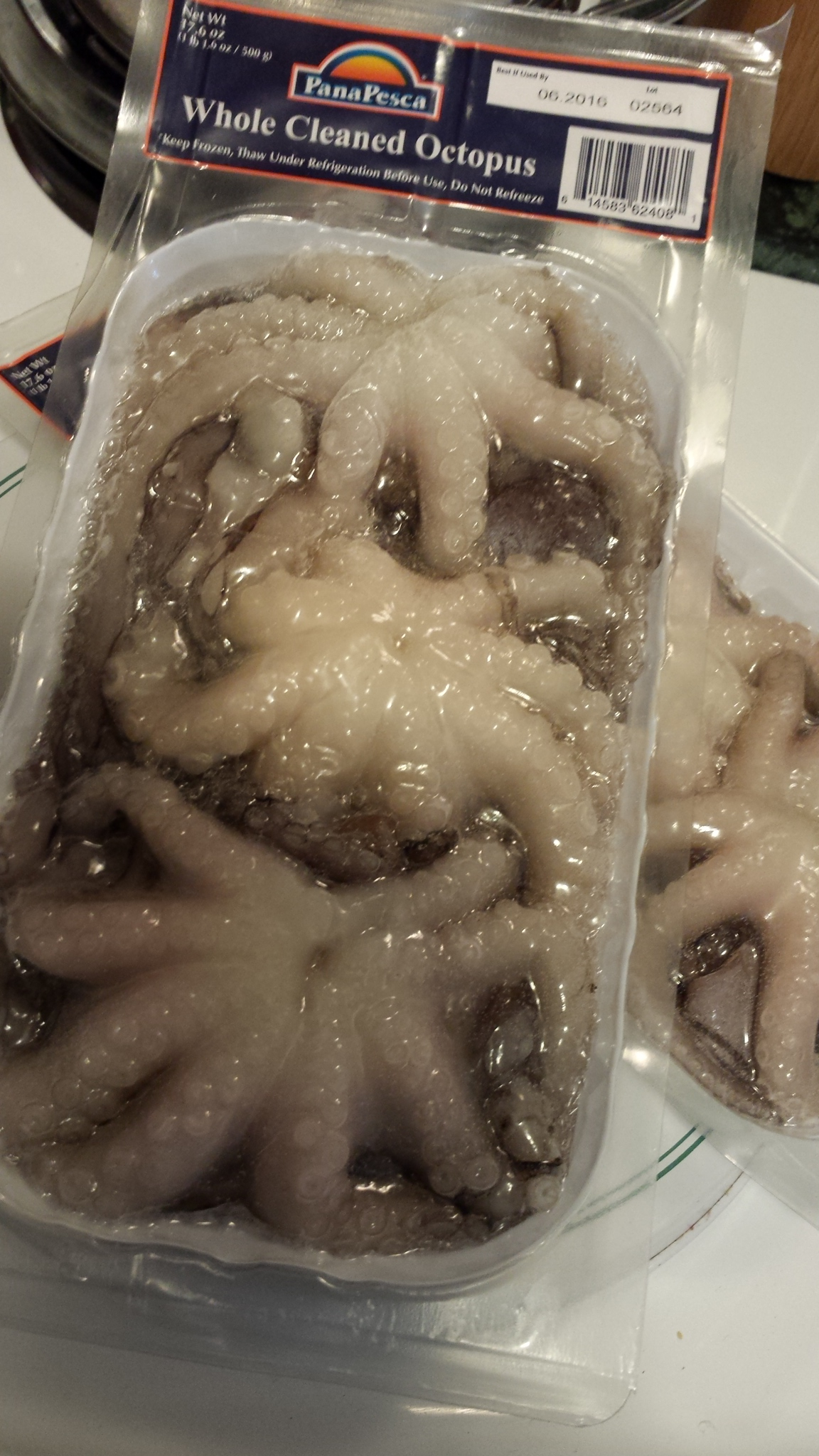 Octopus\'s Garden & my first time cooking octopus | NJ SPICE
